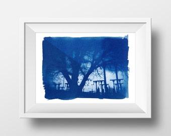 Trees at dusk – handmade photographic Cyanotype art print