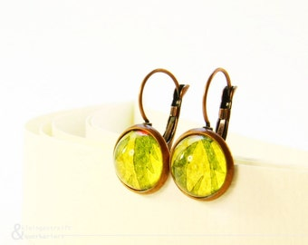 "earrings ""Agatha"" made from wallpaper - green leaf under glass in coppery coloured frames // wallpaper jewelry // nature //leaf"