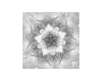 Snow Sparkles, Abstract Photography, Black and White, Snowflake Art, Winter Wonderland, Bold Graphics, Kaleidoscope