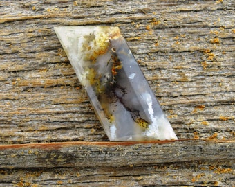 Graveyard Point Plume  agate Cabochon