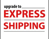 EXPRESS Shipping Upgrade for Landscapes In Miniature