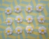 Flower Cabochons Resin Flowers 100pcs White Color Resin Sunflower Charms--14mm