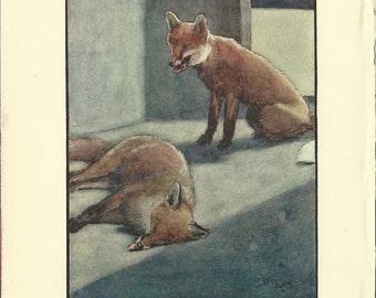 Fox Wall Art fox artwork | etsy