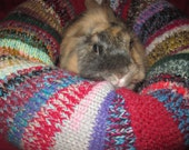 alpaca Tussah silk mohair cotton and wool Ugli Donut bunny rabbit bed