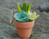 Tiny Faux Succulents in a Clay Pot - Potted Air Plant - Felt Succulent Arrangement - With or Without Hanger