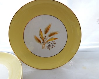 Vintage 1950s Autumn Gold by Century Service Salad Plates