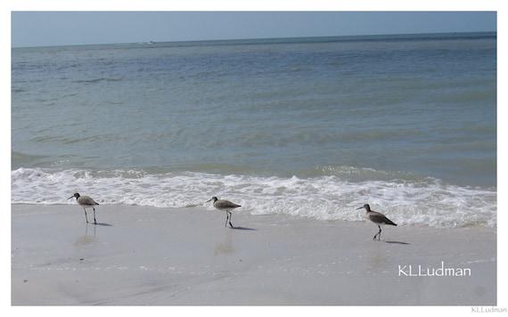 Strolling the Beach