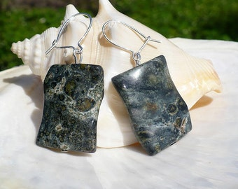 Serpentine Jasper earings with sterling silver