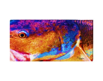 """Colorful Redfish up close print on canvas: 16x32"""" red drum face print on canvas spottail bass print in bold colors"""