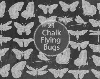 Chalk Flying Bugs