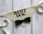 Ivory Best Dog Boy Bowtie Dog Collar Bandana Rustic Burlap Wedding Photo Prop Save the Date Engagement Photos