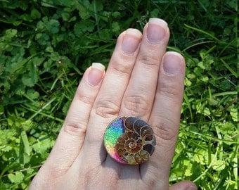 Rainbow ammonite ring.