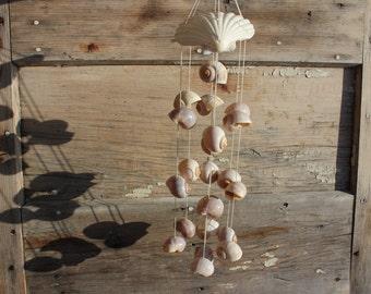 Beach Decor - Pectin and Pila Globossa Shells Windchime - Outdoors - Garden - Patio - Beach