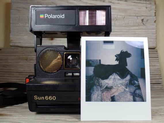 polaroid sun 660 auto focus instant camera polaroid 600 film. Black Bedroom Furniture Sets. Home Design Ideas