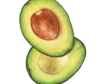 PRINT - Avocado #1 (Watercolour Wall Art)