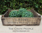 Vintage Wood Crate from Belgium || Grape Picking Crates from Europe