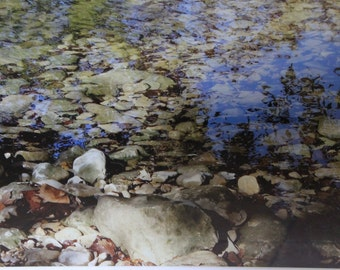 "Barton Creek-""Leaves on the rocks, Austin Tx, River Rocks, Zilker Park, Barton Springs, Large Framed Photography"