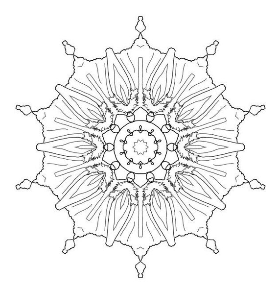 4 Adult Coloring Pages PDF Mandala Snowflake Flowers