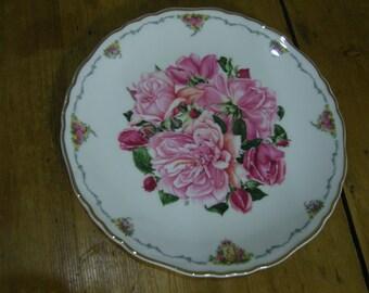 Royal Albert Favourite Flowers Plate Albertine Rose