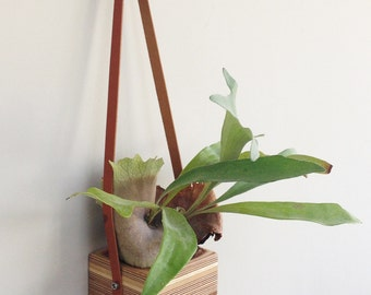 Interior wall hanging reclaimed wood planter