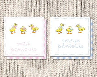 Baby Ducklings Enclosure Cards or Labels