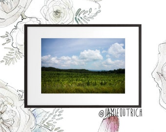 Nature Photography Print