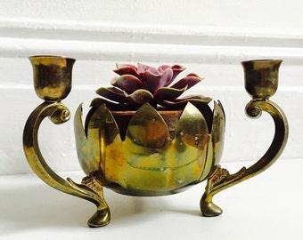 Sassy Brass Candelabra Planter : Bowl