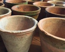 Set of 4 French Vintage Terracotta Plant Pots