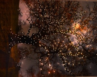 Print: Memories tree