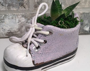 """Baby Shoe Planter with Live Plant - 5 x 2 x 4.75"""" - Pink"""