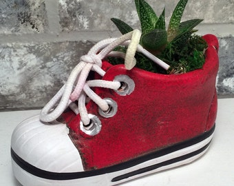 """Baby Shoe Planter with Live Plant - 5 x 2 x 4.75"""" - Red"""