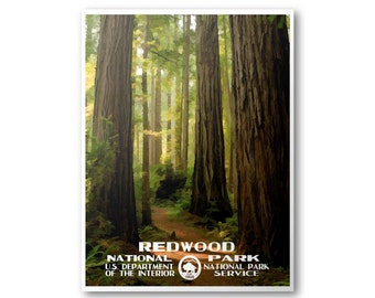 Redwood National Park Travel Poster