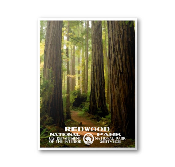 Redwood national park poster like this item sciox Choice Image