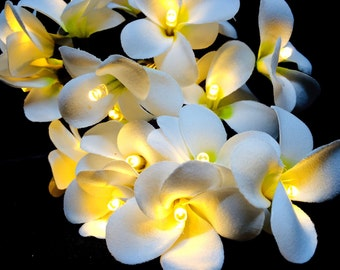 Battery LED White Frangipani Style Flower Fairy Light String Frangipannis