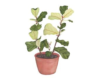 Fiddle Leaf Fig Watercolor Botanical Print  / Houseplant Plants Foliage Clay Pot Nature Boho Decor Jungle Fine Art 4x6 5x7 8x10 Garden