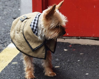 The Dog Trench Coat