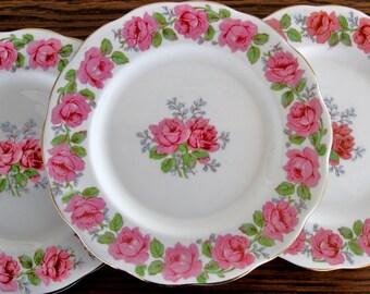 Vintage Queen Ann Lady Alexander Rose china plates, china salad plates, set of 3, fine bone china plates, 1940s, bone china, china plates