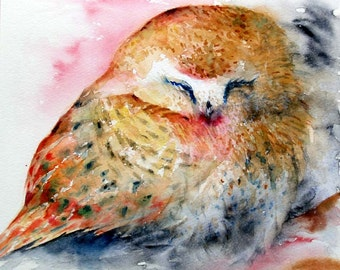 Sleeping Owl Watercolor Painting Original Bird Painting Saw whet Owl Fine Art Orange Bird Animal Picture,8x7 in