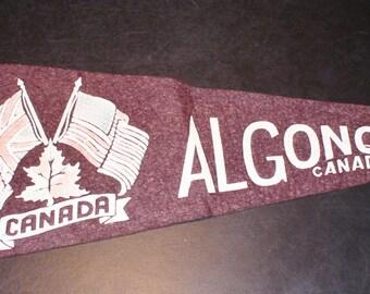 """Vintage ALGONQUIN PARK Canada with RMP Mountie Souvenir Felt Pennant - 22 1/2"""" - Circa 1940s"""