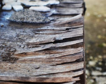 Macro, Wooden Table, Composition, Simple, Detail, Texture