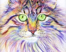 Psychedelic Cat Colored Pencil Drawing Download