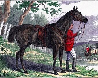 Victorian Horse Art, Foxes, Hunting Decor, Horse Art, Horse Decor, Horse Gift Ideas, Hounds, Equestrian Prints, Equestrian Decor, Equine Art