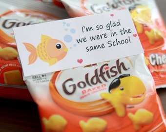 Printable End of School Year Tag - Instant Download - Digital PDF - Class Party - End of the Year - Teacher's Gift - Goldfish Tag