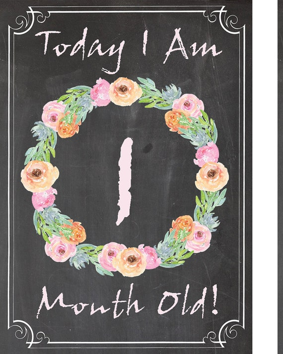 photo relating to Printable Baby Month Signs called Thirty day period By means of Thirty day period Picture Prop Printable Weeks Child Thirty day period By way of