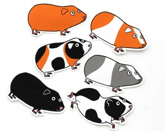 guinea pig stickers (6), funny stickers, rodents, orange, black, orange and white, grey and white, calico