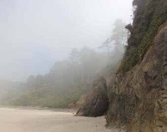Nature Photography, Oregon Coast, Arch Cape, Ocean, Beaches, Morning Fog