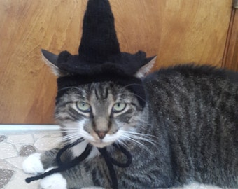 Cat Witch Hat, Knit Hat for Cat