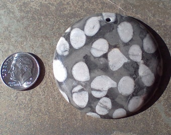 FOSSILIZED CORAL in Rounded, Polished Stone Disk, Drilled, Black, White & Greys.