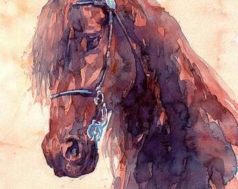 Red Horse Head, Bay Horse Head, Red Stallion Head, Blood Horse Head (print)