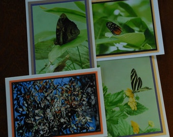 Set of 4 blank greeting cards-Butterflies